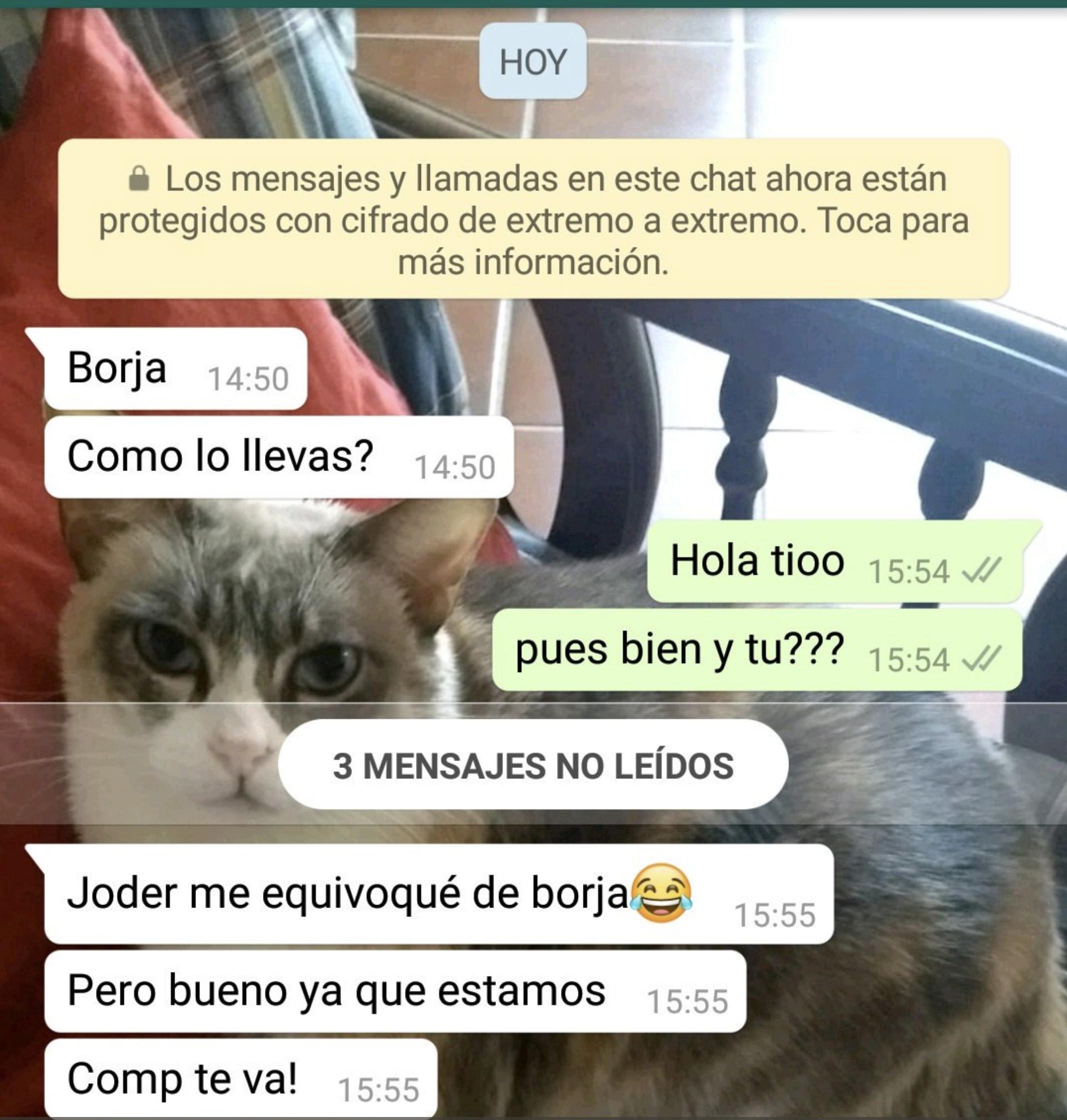 """""""Borja, cómo lo llevas?"""" Un chico se lleva la decepción de su vida tras un mensaje de sus contactos por WhatsApp"""