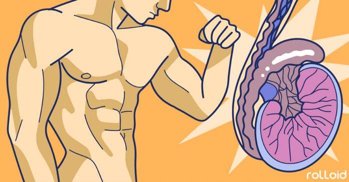 6 Trucos Para Aumentar La Testosterona Y 3 Tipos De Alimentos Que Hay Que Tomar Te Suena